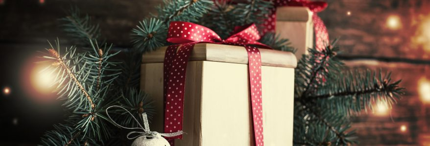 Incredible Christmas Gift Ideas under $30 for Geeks